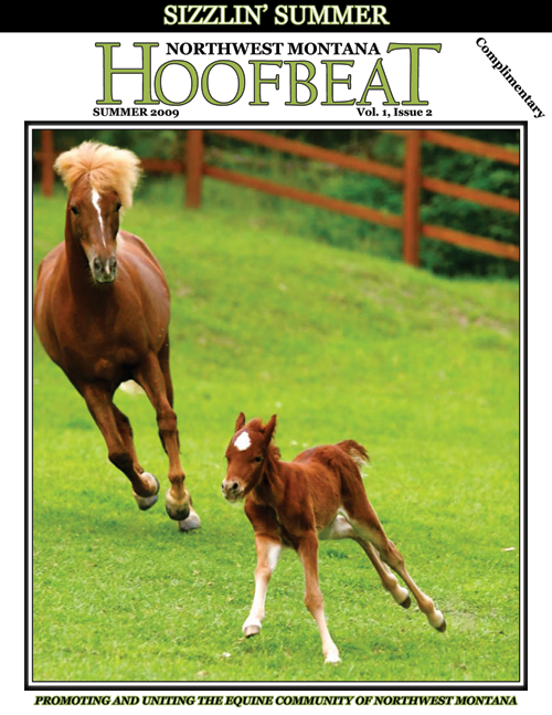 Kerry Bog Pony Hoofbeat Magazine